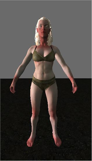The female snow elf as seen in the creation kit