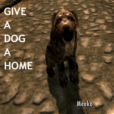 Give A Dog A Home - SPANISH