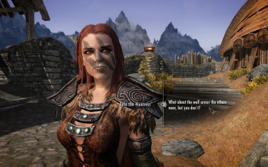 Asking Aela about wolf armor