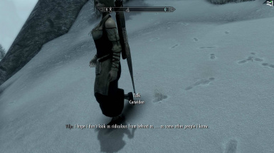 A better Skyrim one step at a time - Thank you