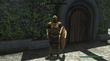 Golden Imperial Armor