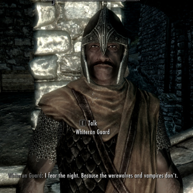 Guard Dialogue Overhaul
