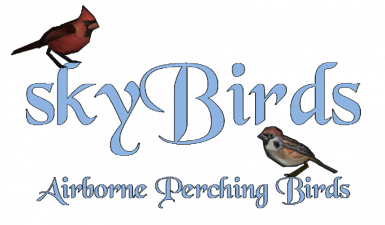 skyBirds - Airborne Perching Birds