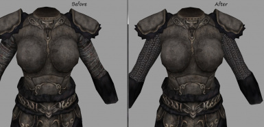 Reapers Female Wolf Armor No Seam and Chainmail