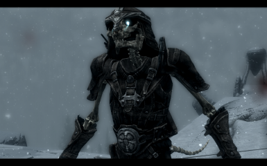 Armored Khajiit Skeleton