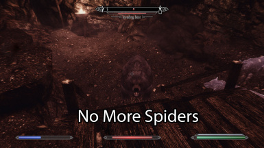 Bears have invaded and spiders are no more