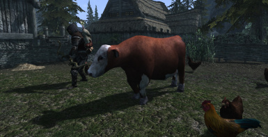 Cows of Skyrim