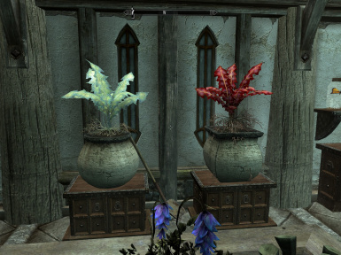Nirnroot and Crimson Nirnroot