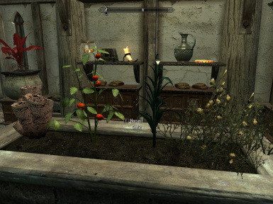 Plants for Skyrim items