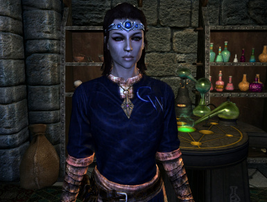 InStyle College of Winterhold Journeyman Mage Robes