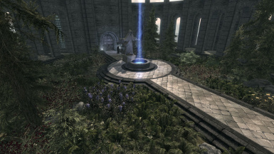 The Mages College garden in full bloom