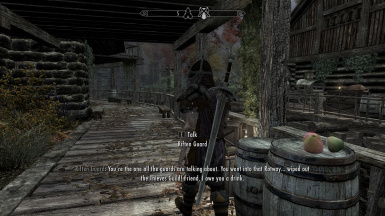 guard dialogue line screenshot courtesy of Frederic J