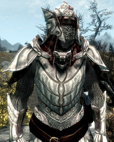 Elven Dragonbone Armor Close