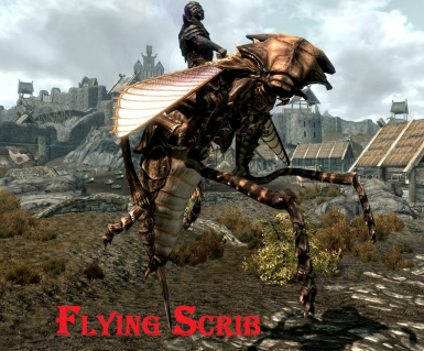 Flying Scrib