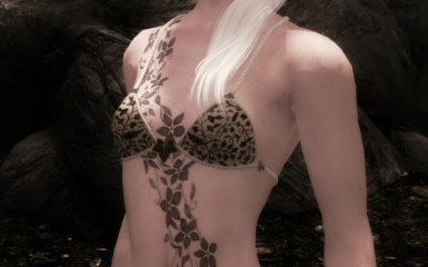 CBBE patch with underwear textures by Rip88