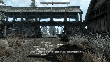 Morthal Second Gate