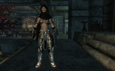 Female Light Knight with Hood