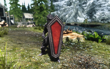 Shield of the Crusader Clean 1