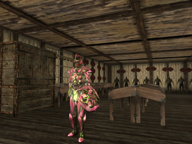 Spinel Armor - Female - Pink