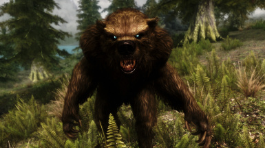 Werebear Customization