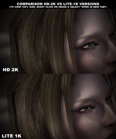 Detail Level Comparison HD 2K vs Lite 1K