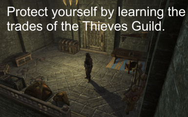 Thieves Guild Training Room