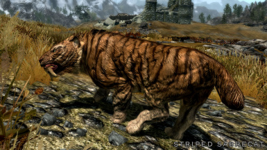 Striped Sabrecat