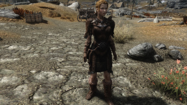Lore Friendly Leather Armor Front