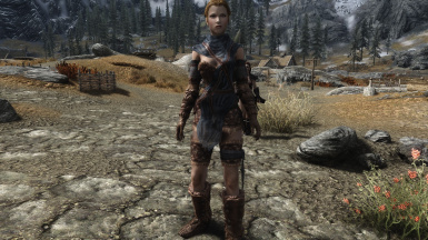 SemiSkimpy Alternate Stormcloak Front Weight 0