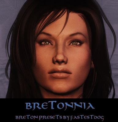 Breton Presets Banner Pic - Other