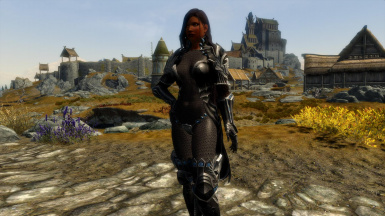 Tera outfit with Chainmail
