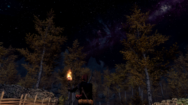Falskaar Diaries Day 1 - landing in Amber Hold - with CoT patch