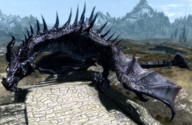 Blackwing dragon