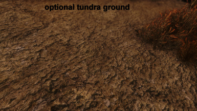 optional tundra ground