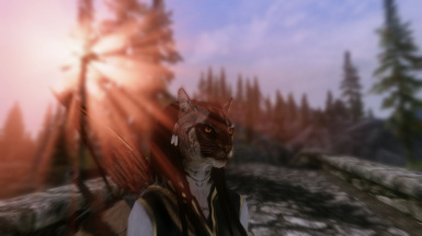 Khajiit small Feathers 1_3