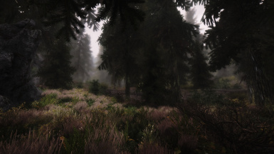 Fog overhaul - version 2