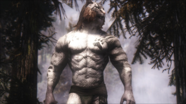 Muscular Khajiit Textures And Skeleton At Skyrim Nexus Mods And