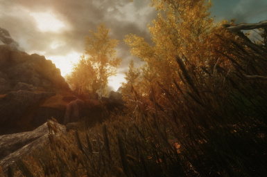 Unique Grasses with The Mistveil - Shades of Autumn ENB