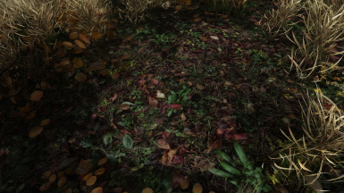 Version 2 - Optional Ground Texture - fallforestleaves01