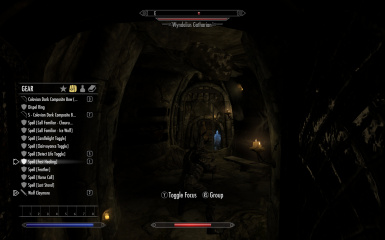 Equip a Spell Ring