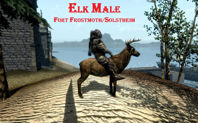 Elk Male in Morrowind Bloodmoon
