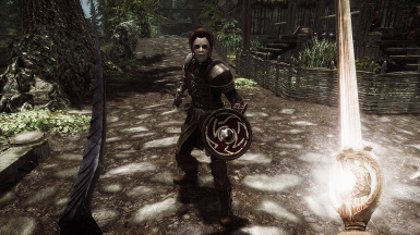 Equippable Shield
