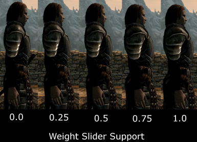 Weight Slider Support