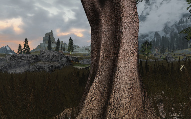another tree retexture