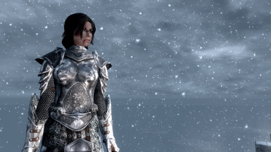 SPOA Silver Knight Armor Female version