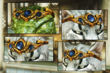 Copper and Sapphire Circlet - Beast Race