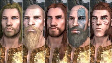 Male Nord Presets