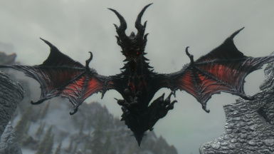 New Wing Details