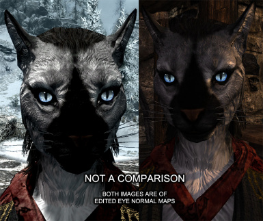 beast1 khajiit sample