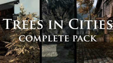 Trees in Cities